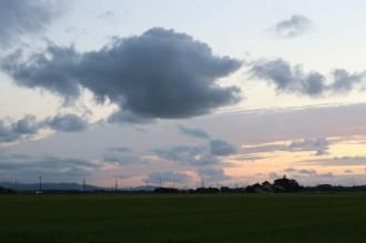 8月30日雲の魚