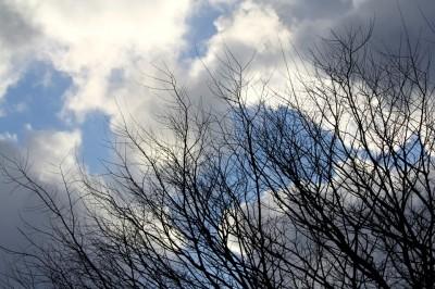 雲間の青空 (1)