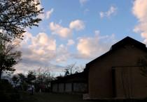 夕雲と樹下美術館