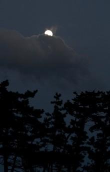 松と月と雲