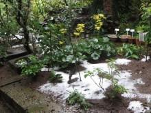 1初雪の残雪