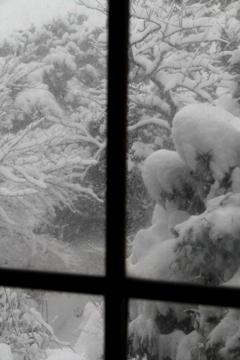 2012冬の窓i