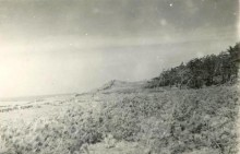3昭和30年代の植林