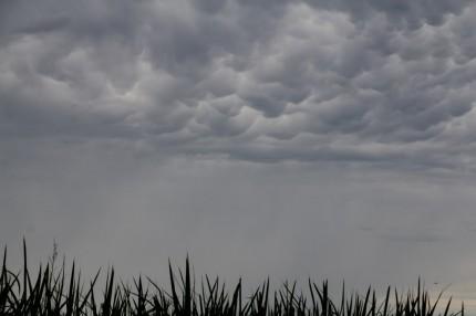 20140810の雲のズーム