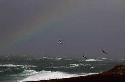 海上の虹 (1)
