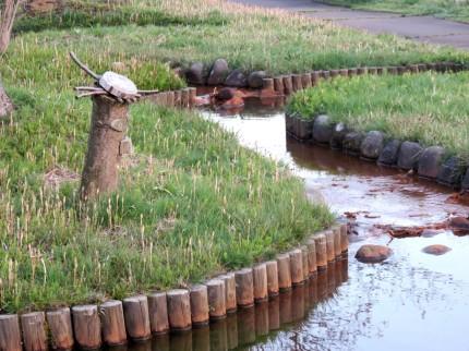 流れと木彫