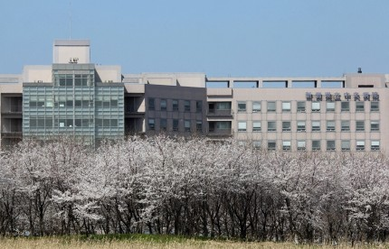 県立中央病院