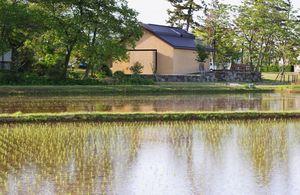 水田と樹下美術館