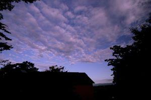 樹下美術館の雲