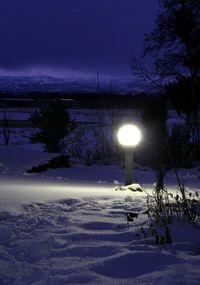 2樹下美術館の灯り