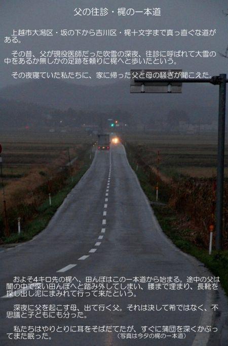 梶の一本道