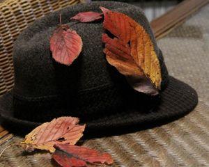 帽子と枯葉1