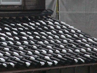 ご近所の屋根
