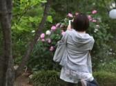 花を撮る方