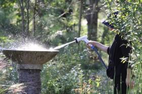 水の補給と掃除