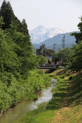 青田川西へ