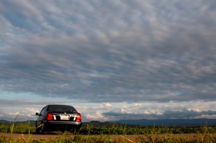 今日の雲と車