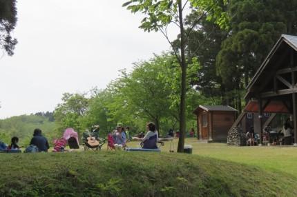 ピクニックの芝生