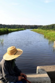 160618鵜の池の船着き場