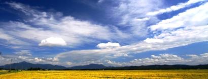 頸北の 山と実りの田