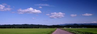 上越の水田と雲