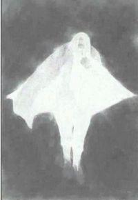 ④作品の白黒反転-1