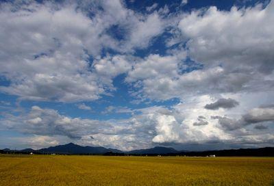米山・尾神岳の雲