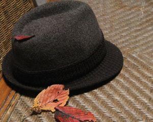 帽子と枯葉2